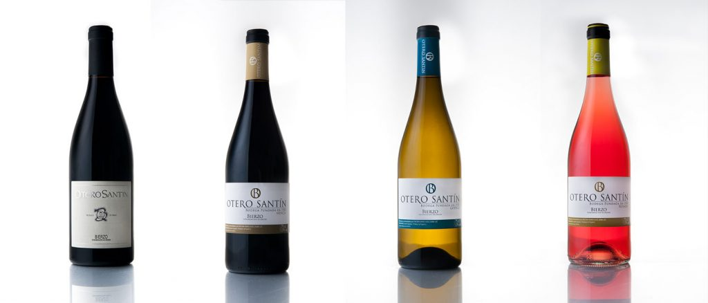 Cata-vinos-Bierzo-Otero-Santin-Encima-Wines