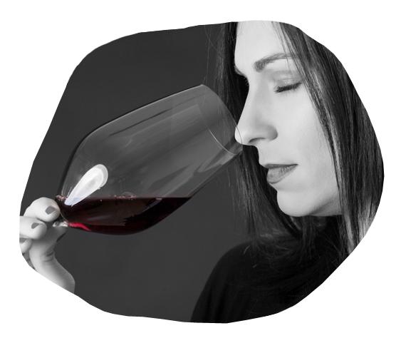 Vino Encima Wines para regalar